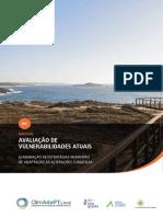 1 ClimAdaPT.local Manual Avaliacao Vulnerabilidades Atuais