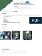 Practica12platanasdecolores