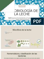 Microbiología de La Lecheeee