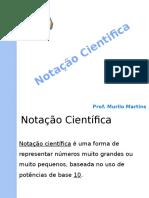 Notacao cientifica