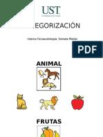 Categorización Versión Simple
