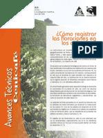 Registro de Floracion de Cafe