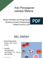 Morfologi Malaria