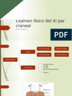 Examen Físico Del XI Par Craneal