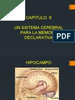 expo libro neuroantomia memoriaa.pptx