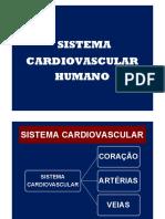 sistema circulatório 12.pdf