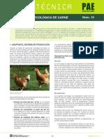 fitxapae15cast.pdf