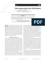polycarbonate1.pdf