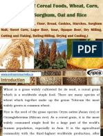 Processing of Cereal Foods, Wheat, Corn, Barely, Sorghum, Oat and Rice (Rye, Triticale, Millets, Flour, Bread, Cookies, Starches, Sorghum Malt, Sweet Corn, Lager Beer, Sour, Opaque Beer, Dry Milling, Cutting and Flaking, Rolling-Milling, Drying and Cooling)
