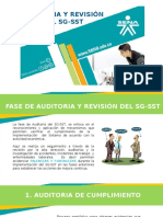 Auditoria y Revision Del Sg-sst