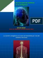 Frecuencias Analgesia 2013