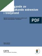 Förebyggande av våldsbejakande extremism i tredjeland