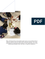 portfolio collections paper