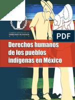 Derechos humanos de los pueblos indígenas en Méxco.pdf