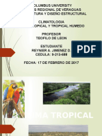 Clima Tropical Y Tropical Humedo