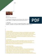 CULTURA INCA(Realidad Nacional y Defensa Civil