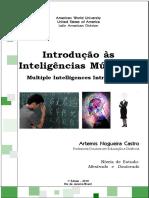 Inteligência Multipla