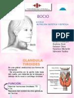 bocioyglandtiorides-130902231208-phpapp01