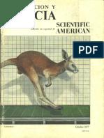 Investigacion y Ciencia 013 - Octubre 1977