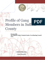 2012 Profile of Gang Members