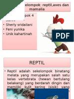 Biota Laut Kelompok 4 PPT