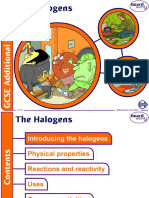 13. The Halogens v1.0.ppt
