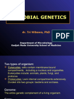 Microbial Genetics Lecture- UNTAD