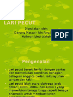 50841177-LARI-PECUT.pptx