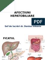 Sistemul Hepatic
