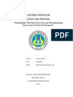 Laporan Survey 2