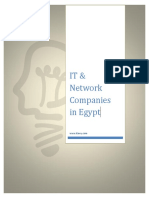 It Network Companies in Egypt