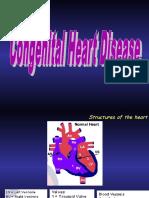 Congenital Heart Disease_(1)