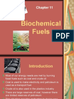 Biochemical Fuels (2)