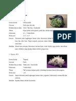 Deskripsi Mineral