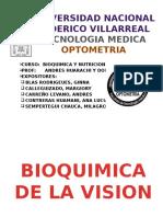 Bioquimica de La Vision