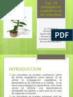 biotecnologia-140606222140-phpapp02