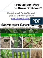 Soybean physiology. PURDUE.pdf