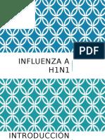 Epidemio Influenza (1)