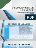 ESPECIFICIDADES DE LAS ÁREAS(3).pptx