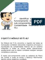 Curso I - Lição 1 - Estrutura Organizacional de Finanças