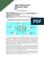 Guia Informativa 9-1 p 2