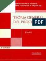 Teoria General Del Proceso. Tomo I. Ferreyra de de La Rua