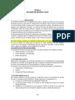 TEMA 6 Packer de Produccion.doc
