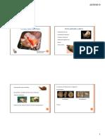 Gasteropodos 2010 bio.pdf