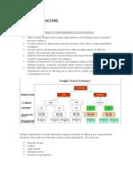Multi Org Structure