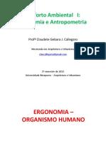 Aula11 Conforto Ambiental Organismo Coluna Metabolismo