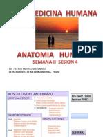 SESION-4-MIEMBRO-SUP (1).pdf
