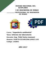 Informe de Laboratorio Ambiental 2