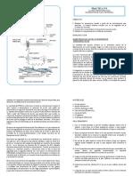 Práctica N° 1 de laboratorio Fisiología Neuromuscular y de los Sistemas Sensoriales 2016