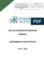 Guia Enfermedad Acido Peptica c Externa 2015 2020